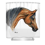 Bay Arabian Horse Watercolor Painting  Shower Curtain
