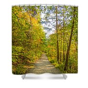 Beautiful Autumn Forest Mountain Stair Path At Sunset Shower Curtain