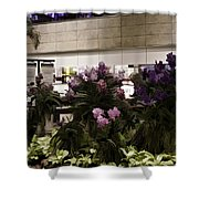 Beautiful Flowers Inside The Changi Airport In Singapore Shower Curtain