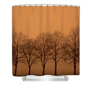 Beautiful Trees In The Fall Shower Curtain