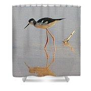 Black Neck Stilt Shower Curtain