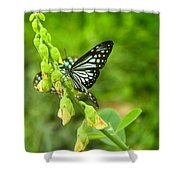 Blue Butterflies In The Green Garden Shower Curtain