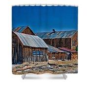 Bodie Shower Curtain