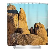 Boulders In A Desert, Joshua Tree Shower Curtain
