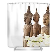 Buddha Figurine  Shower Curtain
