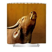 Buffalo Shower Curtain