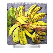 Bunch Of Banana Shower Curtain