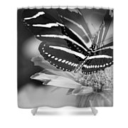 Butterfly In Motion Shower Curtain
