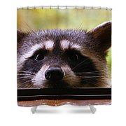 Can You See Me Now? Shower Curtain