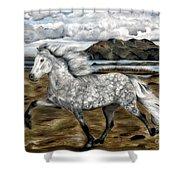 Charismatic Icelandic Horse Shower Curtain