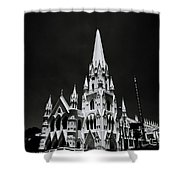 Black And White Basilica Shower Curtain