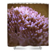 Cilia Of The Respiratory Tract Shower Curtain