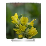 Clustered Broom Shower Curtain