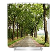 Cobblestone Country Road Shower Curtain