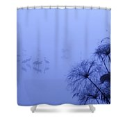 Common Cranes Shower Curtain