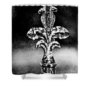 Court Jester - Bw Texture Shower Curtain
