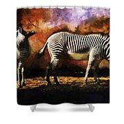 Creation Zebra Shower Curtain