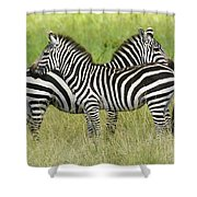 Crisscross Stripes Shower Curtain