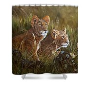 Curious Anticipation Shower Curtain