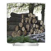 Cut Tree Trunks Piled Up For Further Processing After Logging Shower Curtain