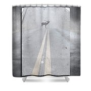 Danger Ahead Shower Curtain by Edward Fielding