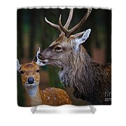 Deer Love Shower Curtain