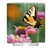 Delicate Wings Shower Curtain by Bill Cannon