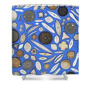 Diatoms Shower Curtain by Kent Wood