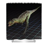 Dinosaur Aucasaurus Shower Curtain