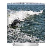 Dolphin Leap Shower Curtain