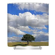 Dramatic Clouds And The Tree Shower Curtain