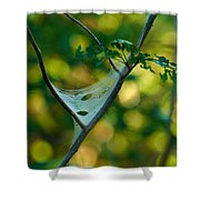 Early Fall Net Shower Curtain