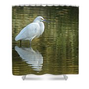 Egret Reflection Shower Curtain