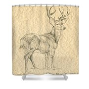 Elk Shower Curtain