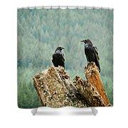 Environment  Nature Shower Curtain