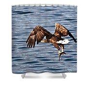 European Fishing Sea Eagle 4 Shower Curtain