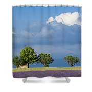 Evening In Provence Shower Curtain