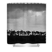 Everglades No.2 Shower Curtain