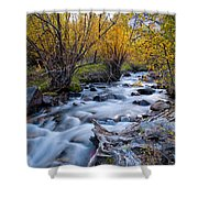 Fall At Big Pine Creek Shower Curtain by Cat Connor
