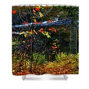 Fall Forest And River Shower Curtain