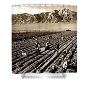Farm Workers And Mt Williamson 1940s Shower Curtain