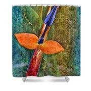 Floral Contentment Shower Curtain