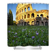 Flowers At The Coliseum Shower Curtain