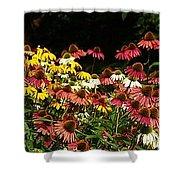 Flowers Gone Wild Shower Curtain
