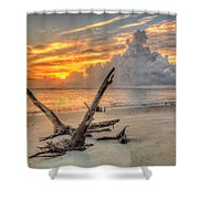Folly Beach Driftwood Shower Curtain