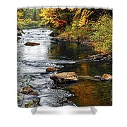 Forest River In The Fall Shower Curtain