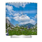 Franconia Notch - Lupine And Daiseys  Shower Curtain