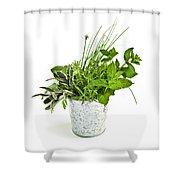 Fresh Herbs Shower Curtain by Elena Elisseeva