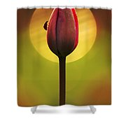 Garden Stories II Shower Curtain