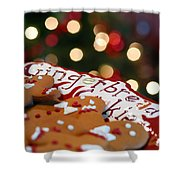 Gingerbread Cookies On Platter Shower Curtain